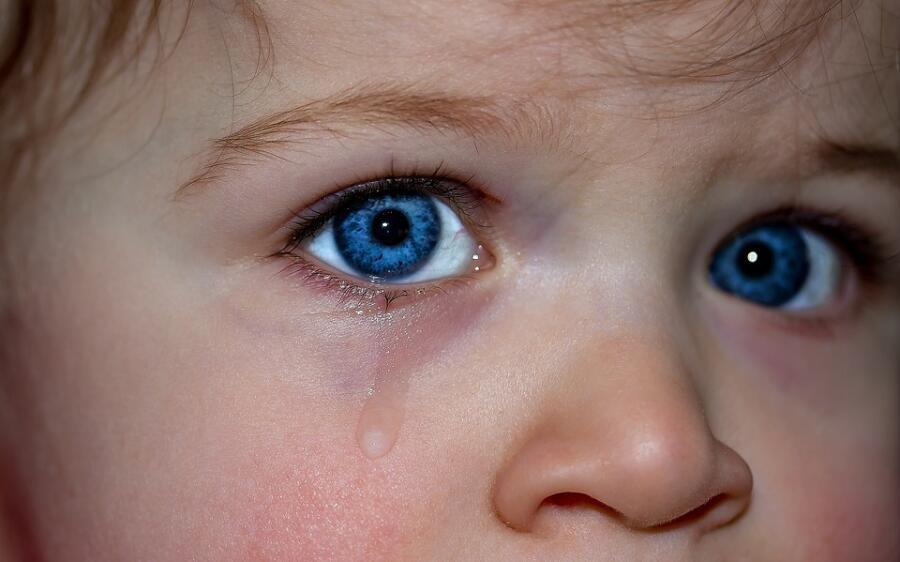 Нужно ли что-то изобретать в вопросах воспитания? Педагогический сонет