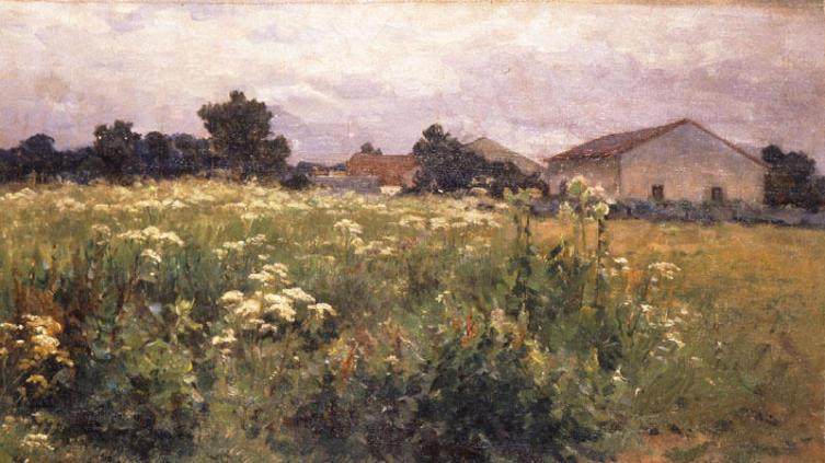 Георгиос Яковидис, «Травяные поля»