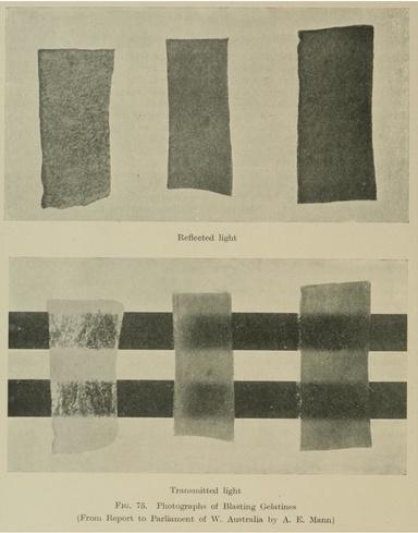 Гремучие студни в отражённом свете (сверху) и на просвет (снизу)