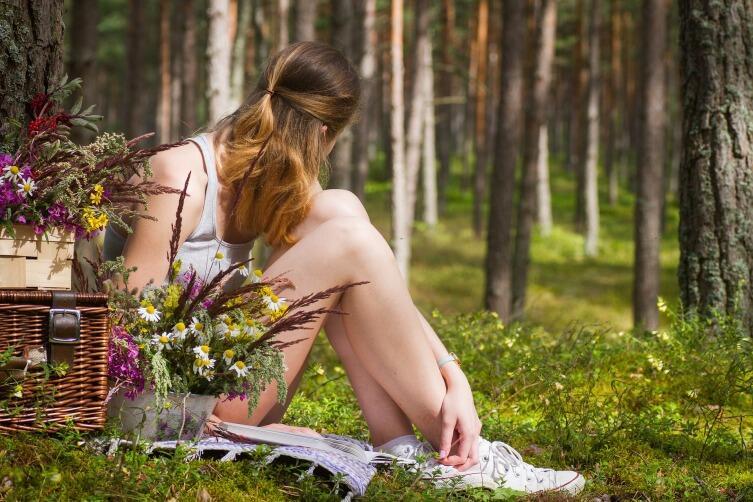 На пикник можно выбраться и в родной лес