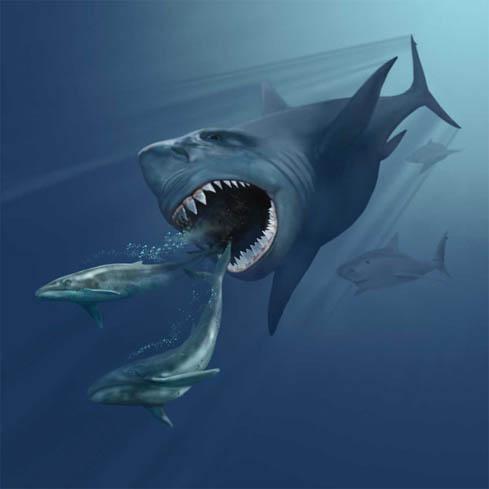 Гигантская акула вымерла или все еще существует?
