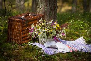 Пикник – это особый мир, возвращение к которому радует душу и бодрит тело!