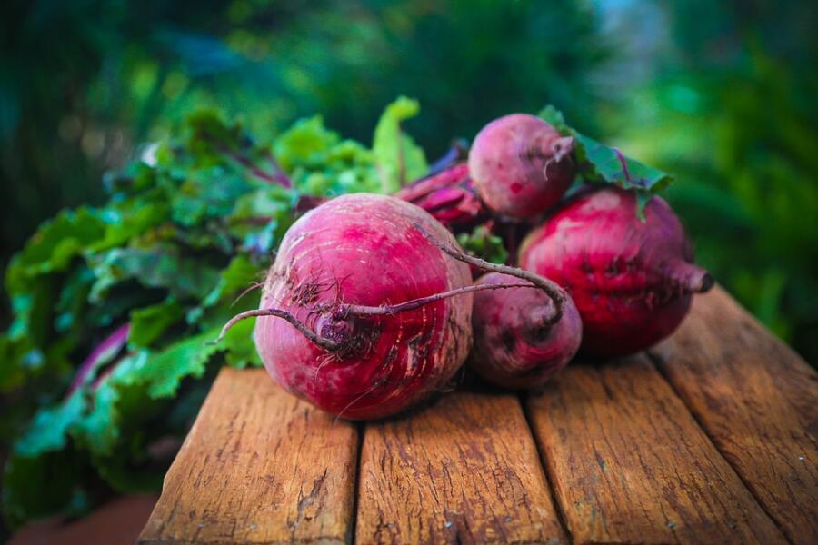 Что приготовить из молодой свеклы? Необычные рецепты для обычного овоща