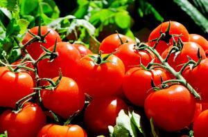 Как правильно выбирать красные помидоры?