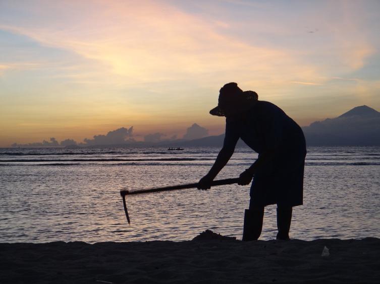 Для чего необходимо рыхление почвы?