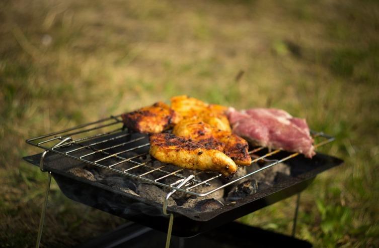 Едем на пикник: в лес или на дачу?