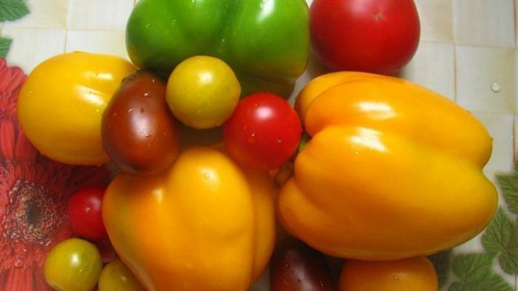 Какие овощные салаты заготовить на зиму?