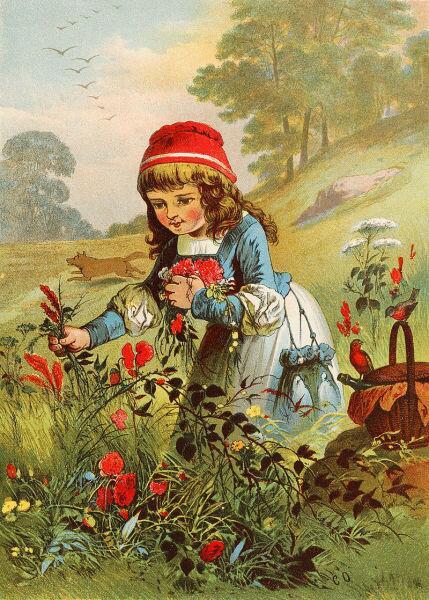 Иллюстрация к немецкому варианту сказки Rotkäppchen - Красный Колпачок