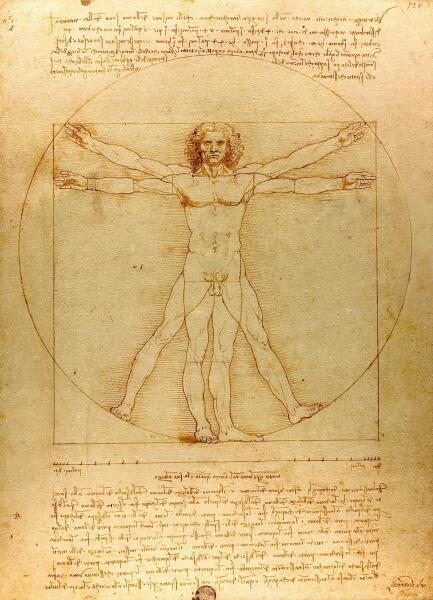 Леонардо да Винчи, «Витрувианский человек (пропорции человеческого тела)», 1492 г.