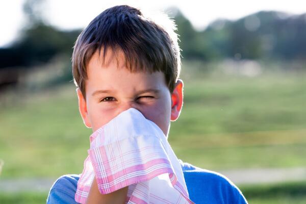 Чем интересна история носового платка?
