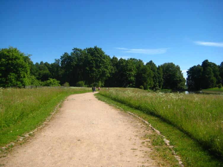 Сельская дорога в Тригорское