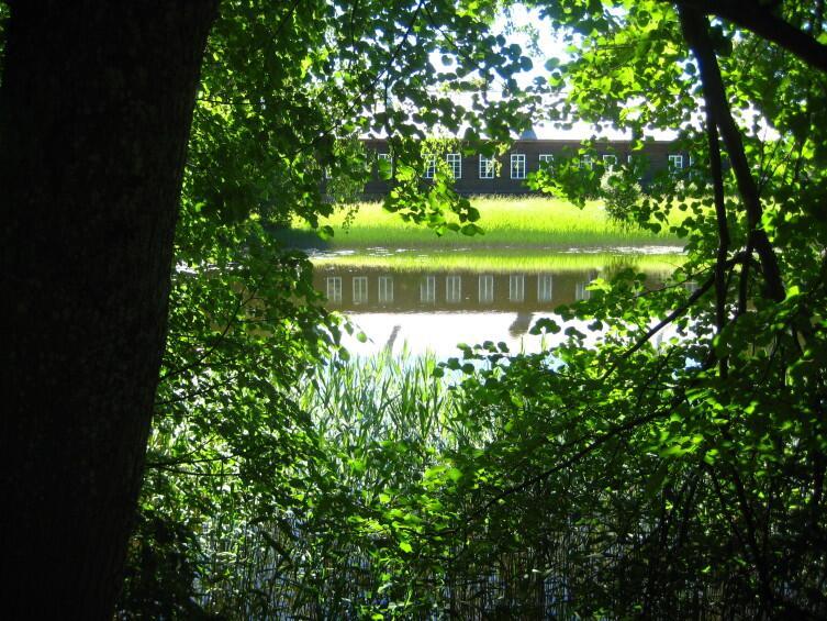 Пейзаж вокруг господского дома в Тригорском