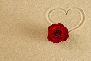 Как Агизур добыл розу пустыни?