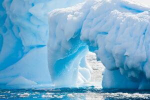 Чем особенно поражает Антарктида?