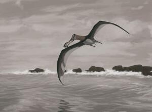 Загадки динозавров. Часть 2: как динозавры летали?