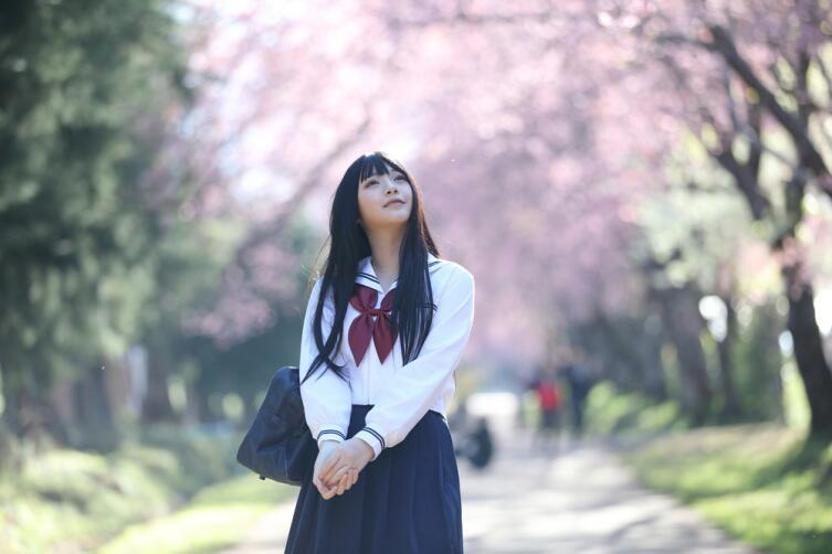 Зацвела сакура - начался новый учебный год в Японии