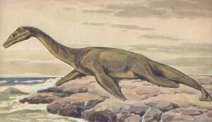 Загадки динозавров. Часть 3: как динозавры плавали?
