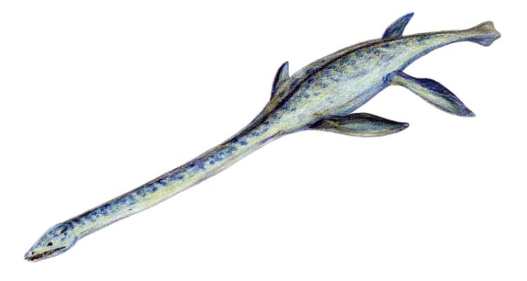 Элазмозавр