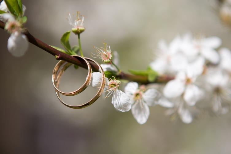 Весенняя свадьба - зелень, цветущие сады