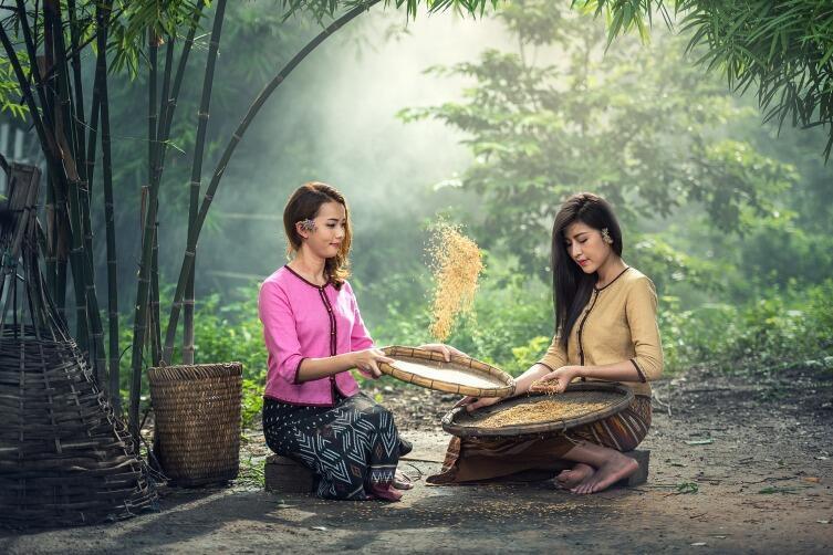 Что туристам следует знать о Таиланде? Сезонные особенности