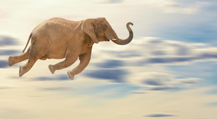 Не делайте из мухи слона, проблема часто не такая глобальная, как кажется