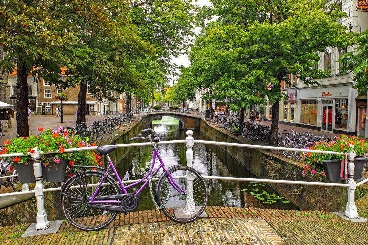 Что представляет собой медицина в Голландии?