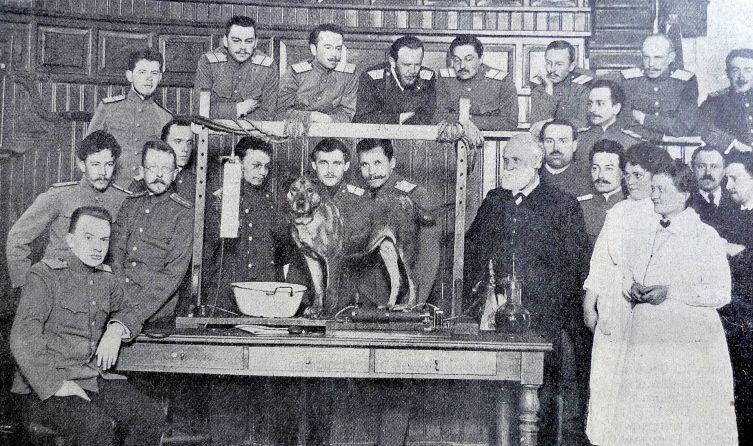 И. П. Павлов в Императорской Военно-медицинской академии, 1913 г.