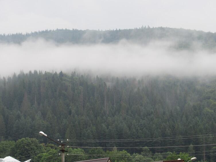 Над Яремчей сгустился туман