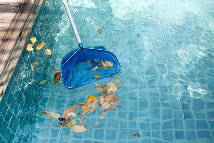 Постарайтесь укрыть водоем заранее, чтобы не вылавливать листья сачком