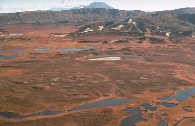 Вулканы кальдеры Узон и Гейзерная, 1990 г., снимок USGS