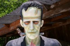 Название «чудовище Франкенштейна» постепенно стало нарицательным для созданий человеческого интеллекта, вырвавшихся из-под контроля.