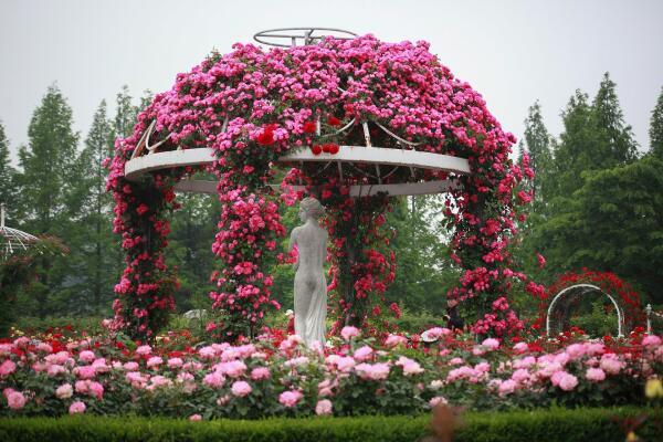 Как выглядел сад насмешек? История чудачеств