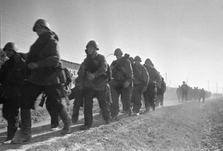 Части Приморской армии выдвигаются к переднему краю обороны в район Лузановки