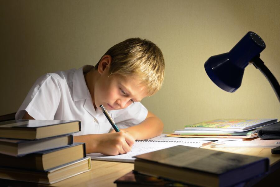 Учиться легко! Как объяснить ребенку состав слова?