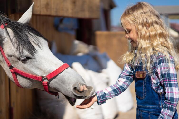 Как победить болезни с помощью животных?