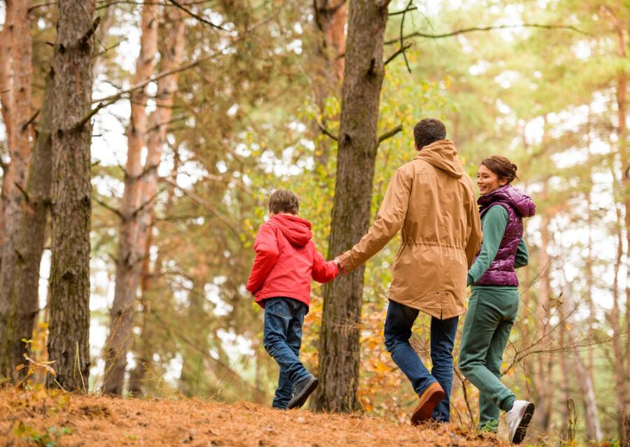 Учиться легко! Как использовать прогулку для подготовки к школе?