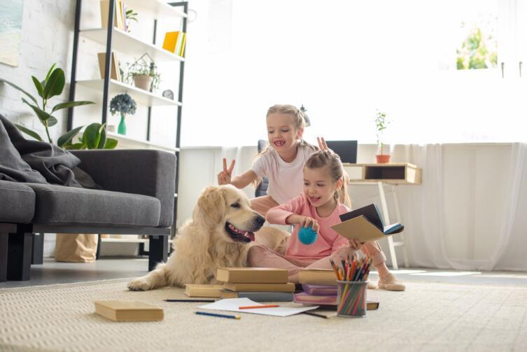 Как отучить домашнего любимца от вредных привычек?