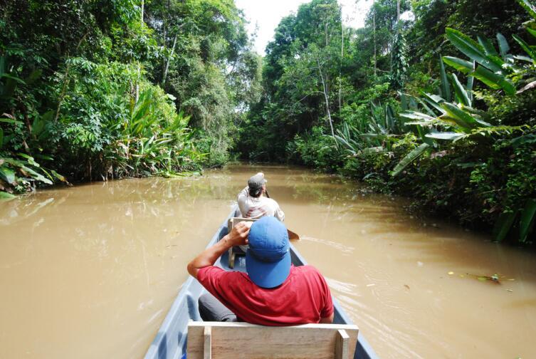 Прогулка по Амазонке на каноэ