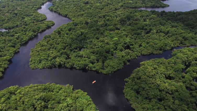 Во время засухи рукава Амазонки оказываются отрезанными от русла