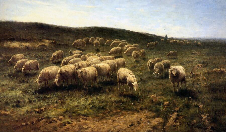 К. Вестербик, «Пастух с овцами»