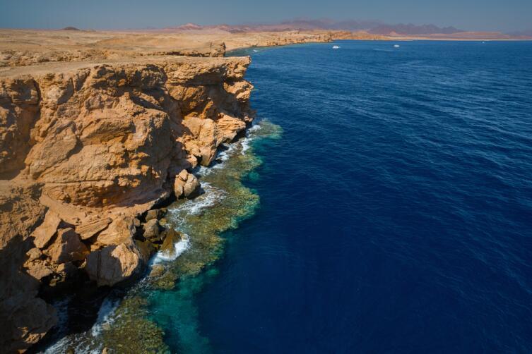 Побережье красного моря