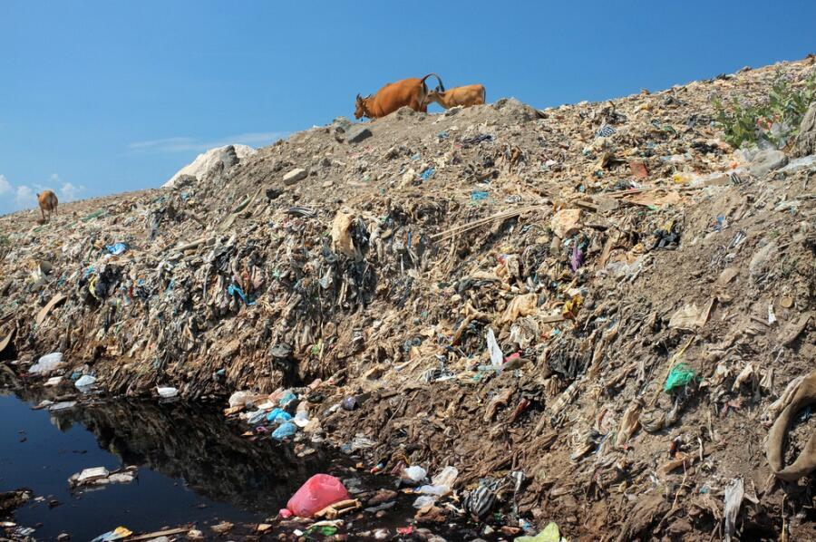 Каждые 10 лет мусорное пятно увеличивается вдвое