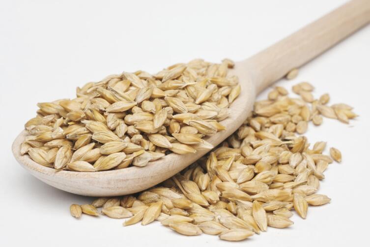 Перловка - это очищенные ячменные зерна