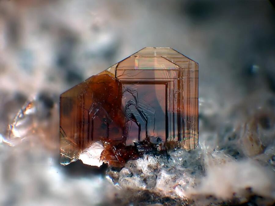 В честь ученого был назван минерал биотит