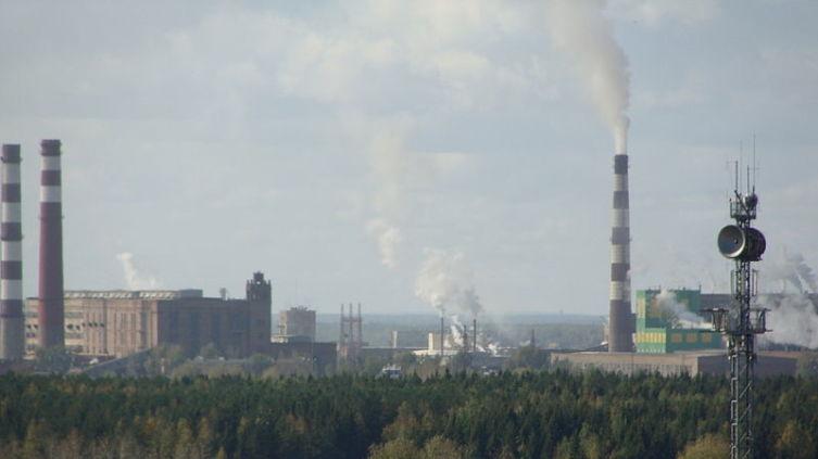 Котласский ЦБК в 2009 г.