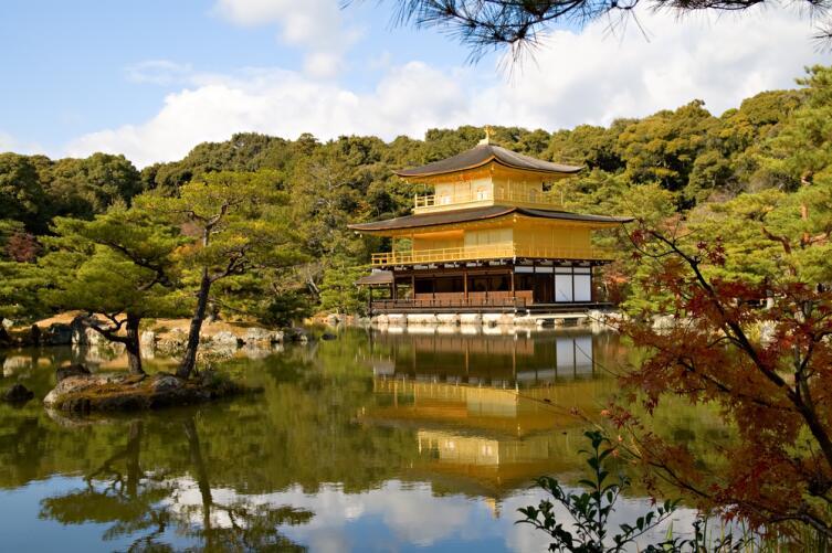 В Японии любят сосны, поэтому покупать в качестве новогоднего дерева лучше сосну