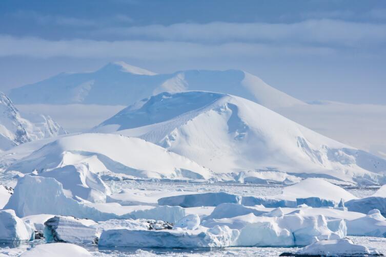 В прошлом Антарктида была зеленым континентом