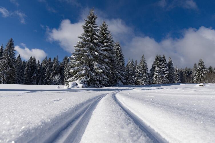 Пешие прогулки зимой поднимают настроение и укрепляют здоровье