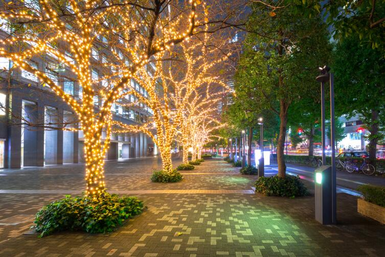 Улицы Токио перед новым годом