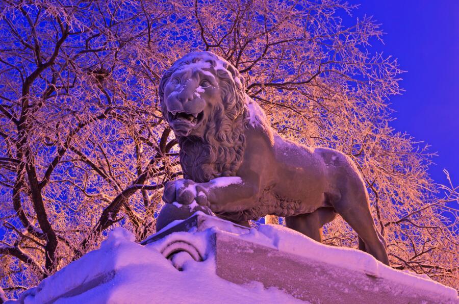 Скульптура льва в Санкт-Петербурге